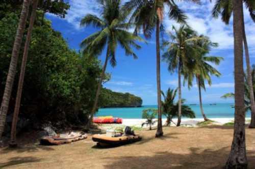приток туристов во вьетнам вырос на 20%
